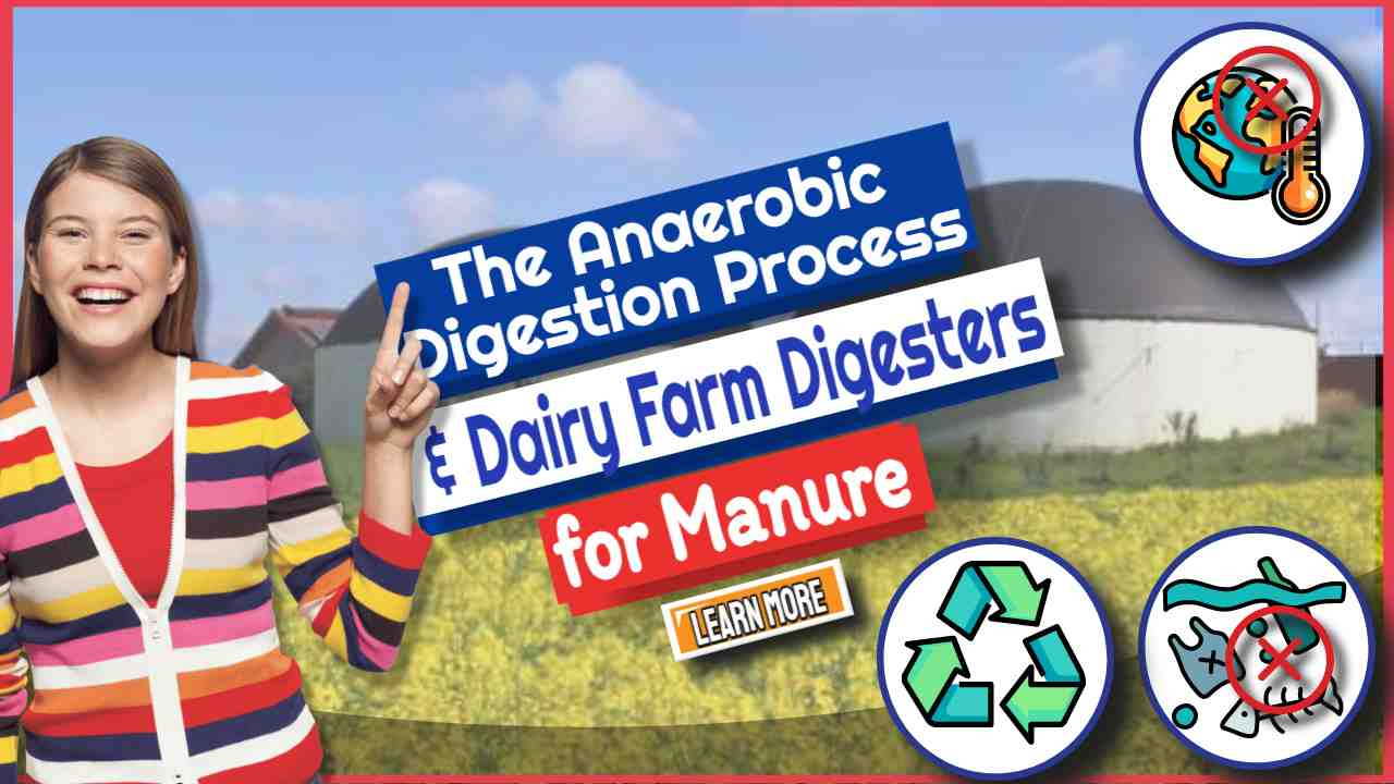 The Anaerobic Digestion Process and Dairy Farm Digesters